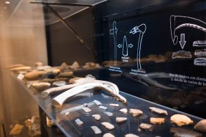 museo-arqueilogico-montoro-12