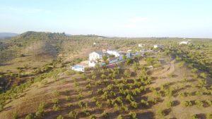 hotel-rural-olivetum-colina-12