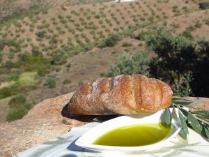 hotel-rural-olivetum-colina-14