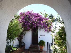 hotel-rural-olivetum-colina-5