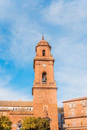 torre-montoro-5