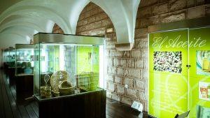museo-del-olivo-montoro